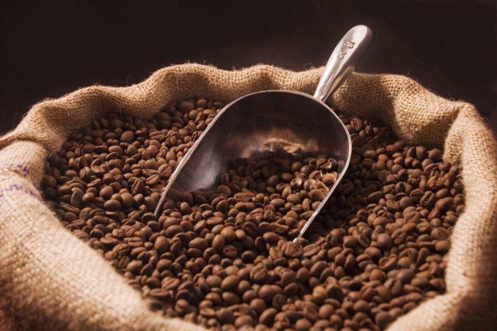 peluang bisnis agribisnis kopi