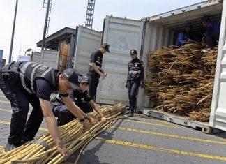 ekspor barang ke luar negeri