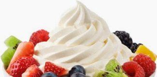 waralaba es krim dan yoghurt