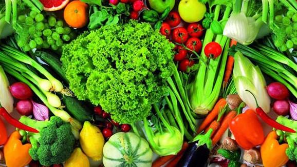 peluang usaha sayuran