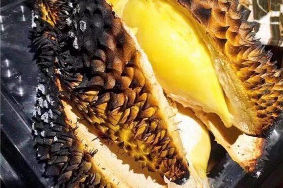 Peluang Usaha Olahan Durian