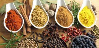 Peluang Usaha Obat Herbal